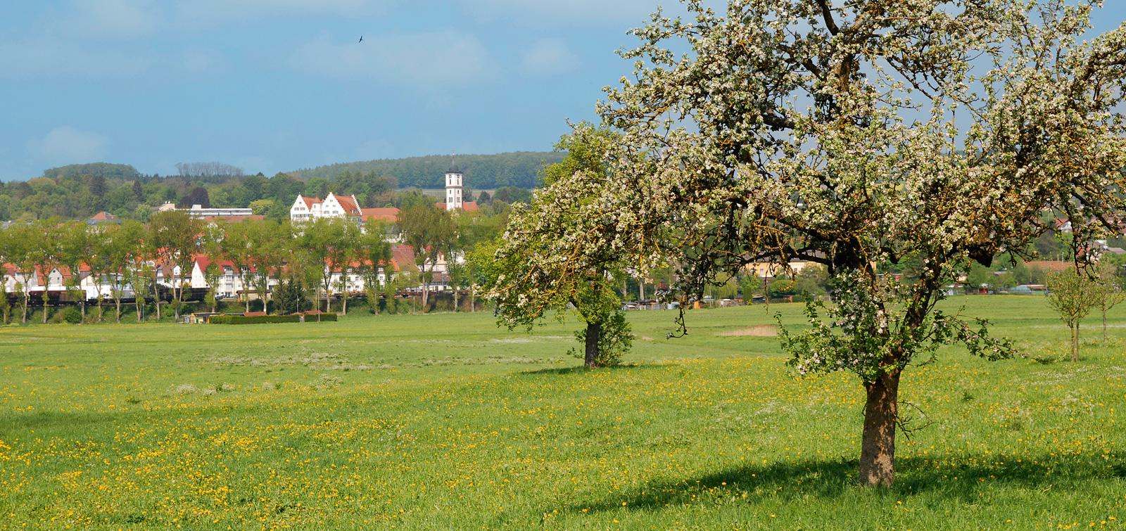 Aulendorf Ansicht